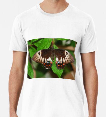 Schmetterling Männer Premium T-Shirts
