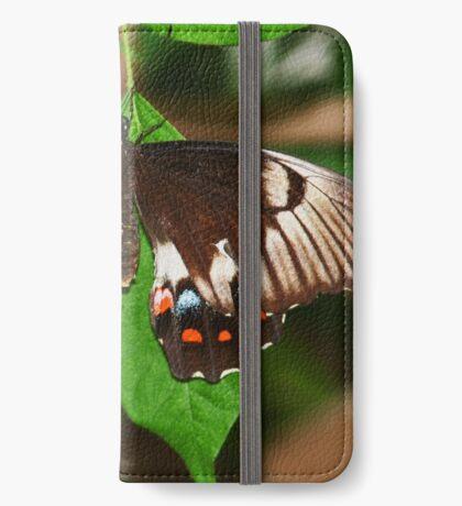Schmetterling iPhone Flip-Case