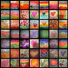 Heart Whisper Series 7 by Suzie Cheel
