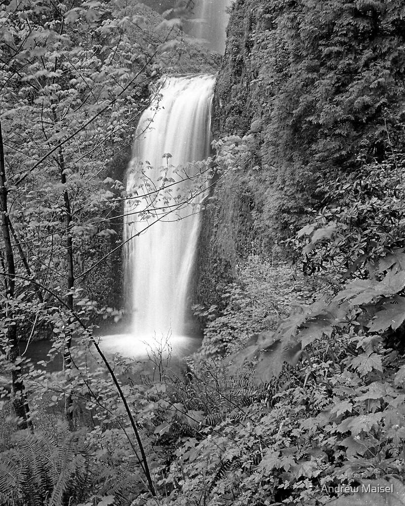 Multnomah Falls B&W 1 by Andrew Maisel