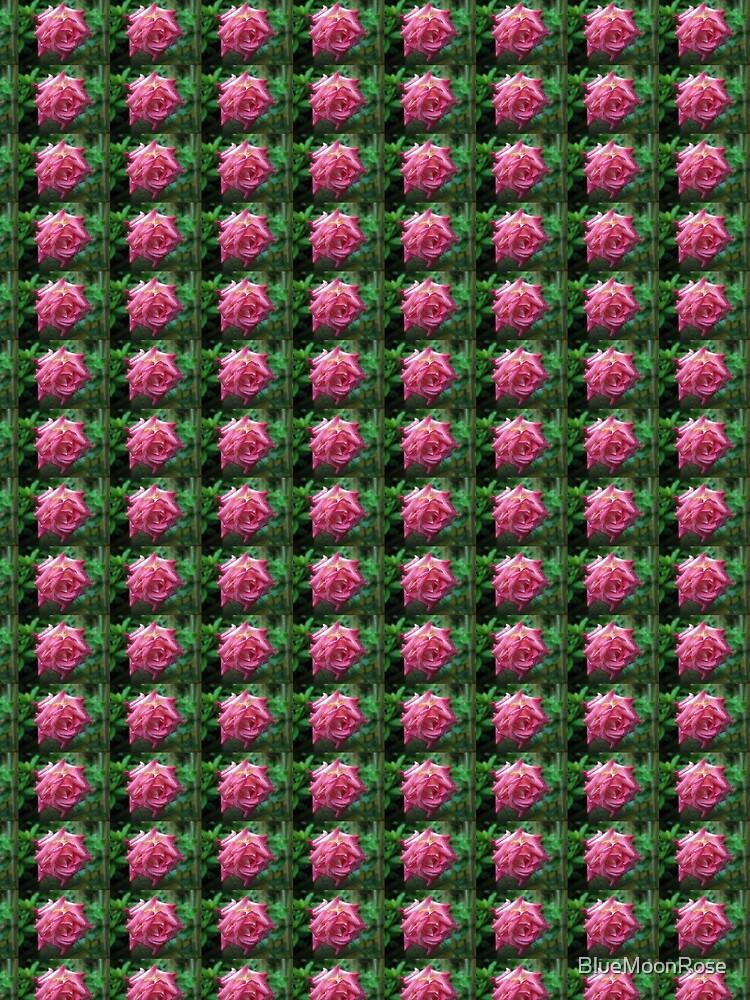 Shades Of Pink - Rose After Rain von BlueMoonRose