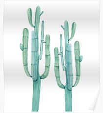 Trendy Cactus Green and White Desert Cacti Design Poster