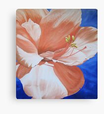 Amaryllis in the Sky Canvas Print
