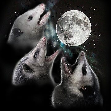 3 Opossum Moon by evilkidart