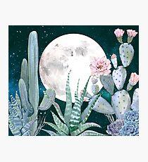 Kaktus-Nacht-hübsche rosa und blaue Wüsten-Stern-Kaktus-Illustration Fotodruck