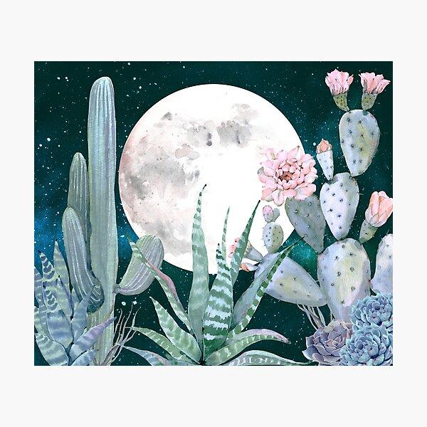 Cactus Nights Pretty Pink and Blue Desert Stars Cacti Illustration Photographic Print