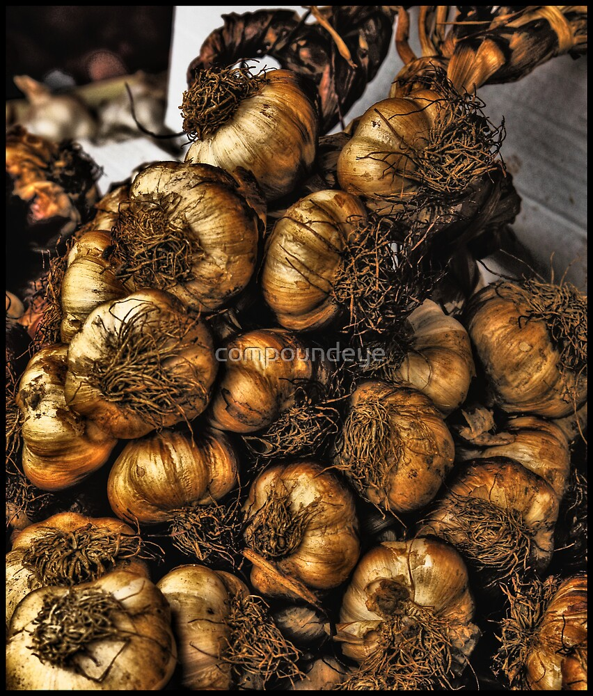 'Know your onions'... by compoundeye