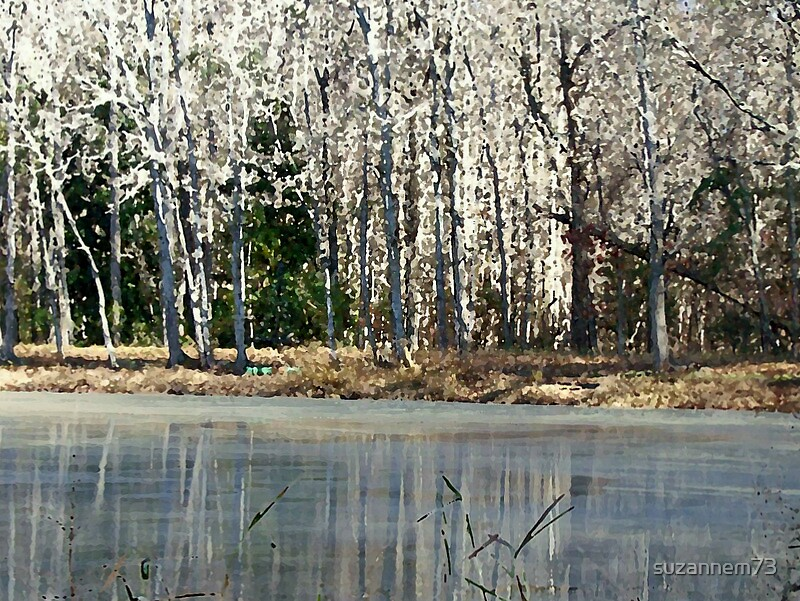 Winter Pond by suzannem73