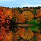 Brown's Pond with Fall Reflections by BigD