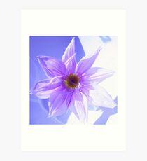 tree dahlia flower Art Print