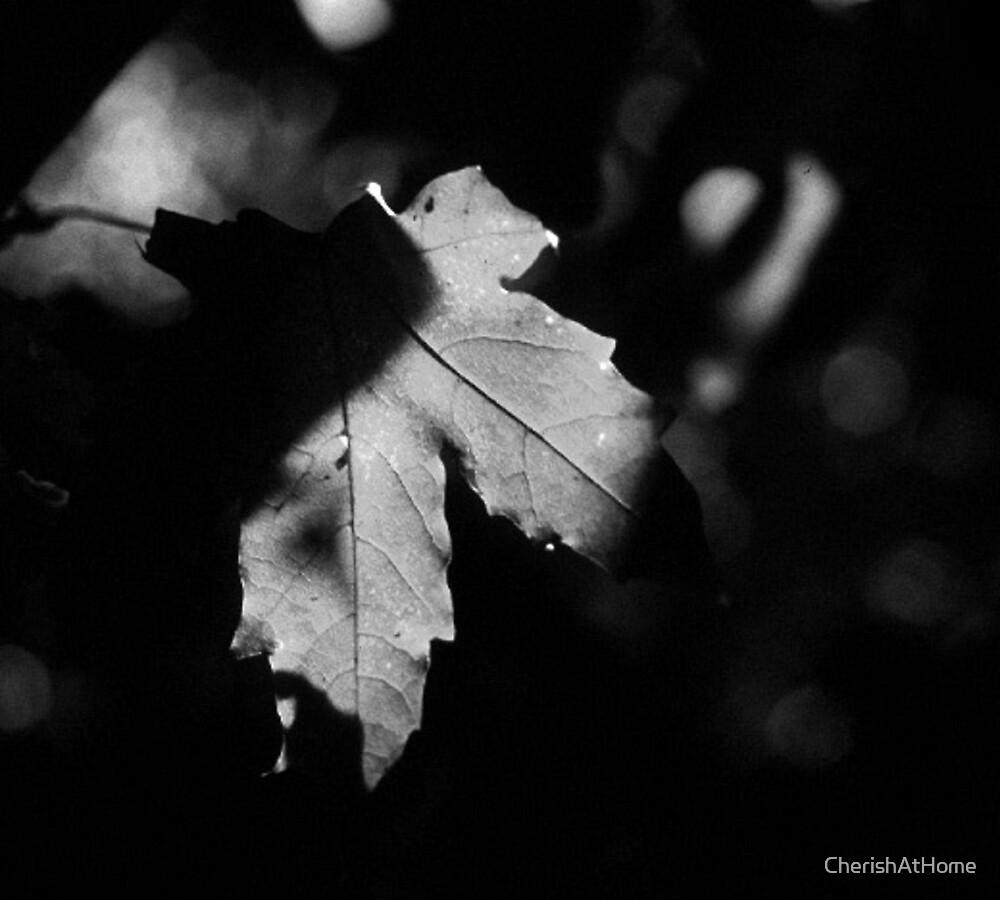 Grayscale Evening by CherishAtHome
