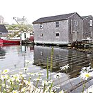 Peggy's Cove by John Thurgood