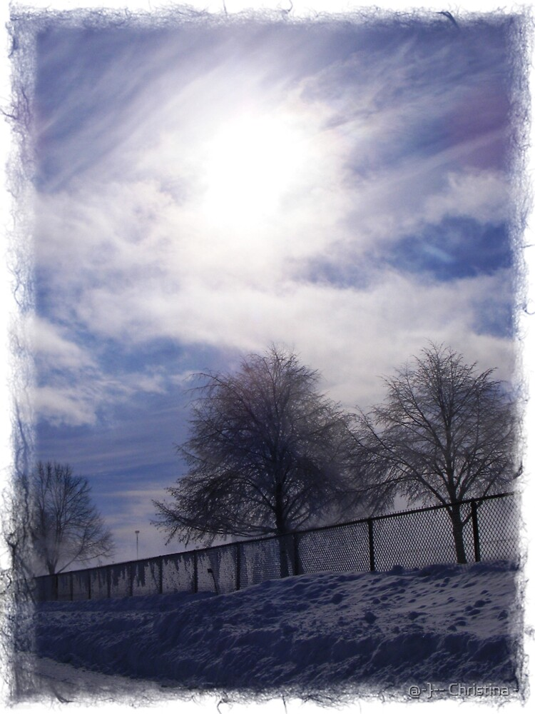 Cold Moring by @-}-- Christina -