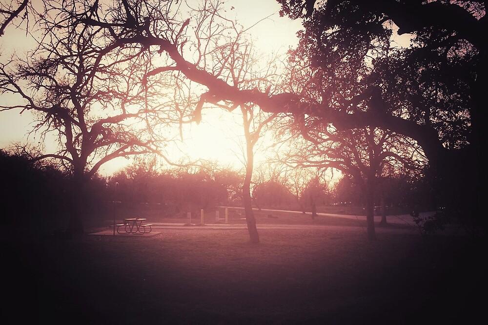 Sunset Picnic by Trish Mistric