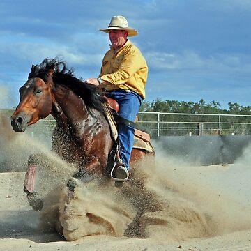 REINING HORSE. by Tinpants