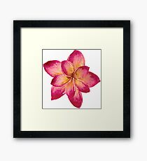 Watercolor Flower  Framed Print