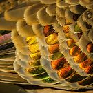 Feathers of Bronze and Gold by theleastone