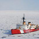 Das USCGC Polar Sea führt eine Forschungsexpedition in der Beaufortsee durch. von StocktrekImages