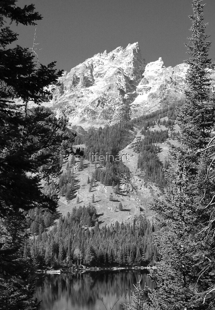 Teton Mountains by lifeinart