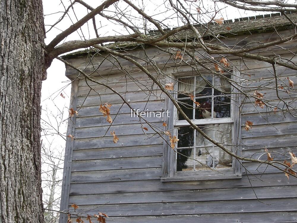 Window Weirdness by lifeinart