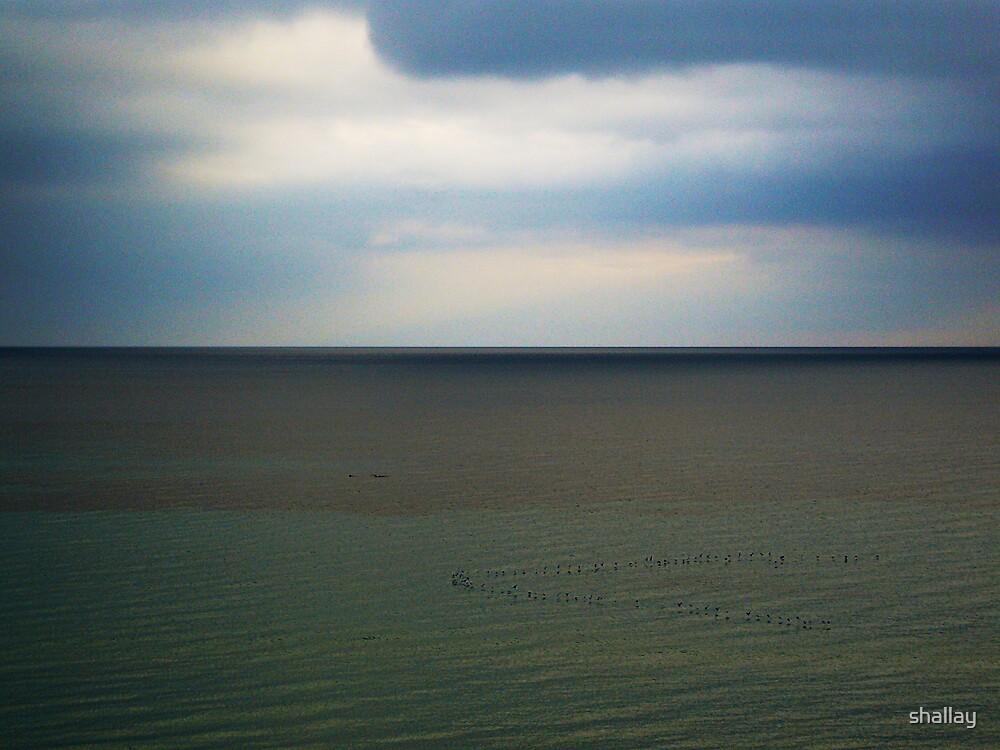 sea & sky by shallay