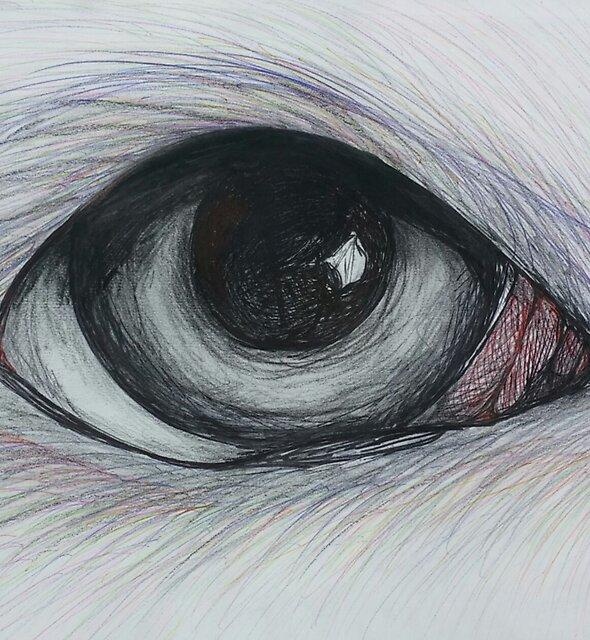 Wolf  by btrainor99