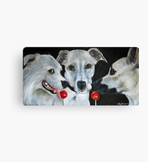 White Dogs and Tootsie Pops Canvas Print
