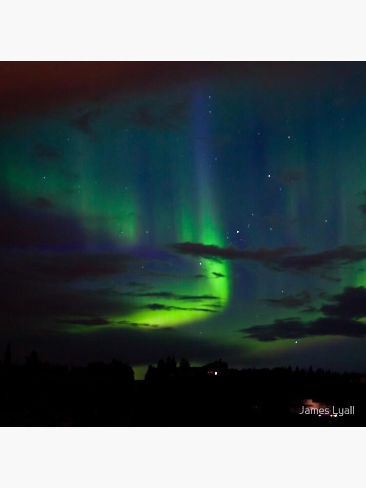 Edmonton Aurora Borealis by corwin