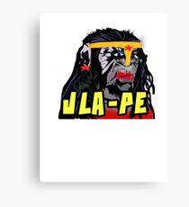 Wonder JLA-PE Canvas Print