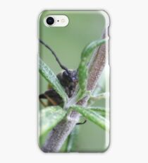 photo macro insect iPhone Case/Skin