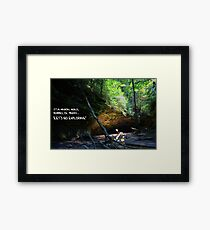 Let's Go Exploring Framed Print