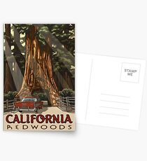Redwood National Park California Vintage Travel Decal Postcards