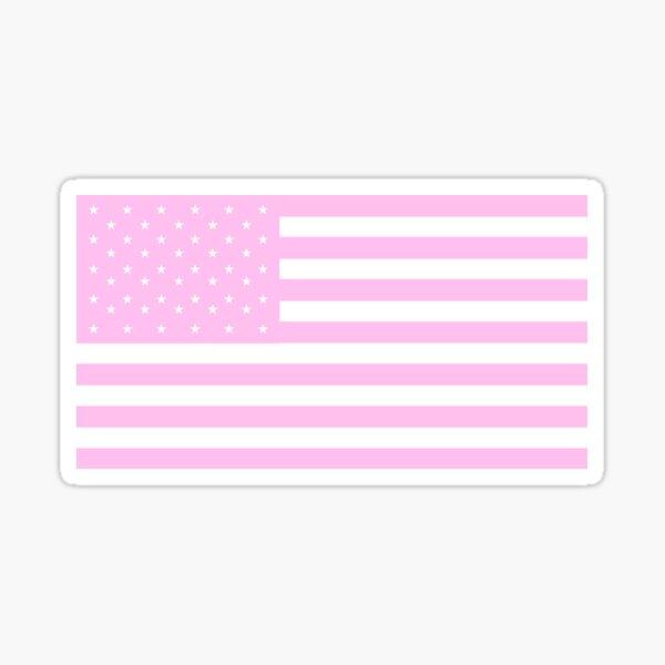 pink pastel american flag Sticker