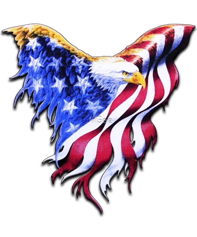 Usa Flag Bald Eagle American Flag By Jiigee Redbubble