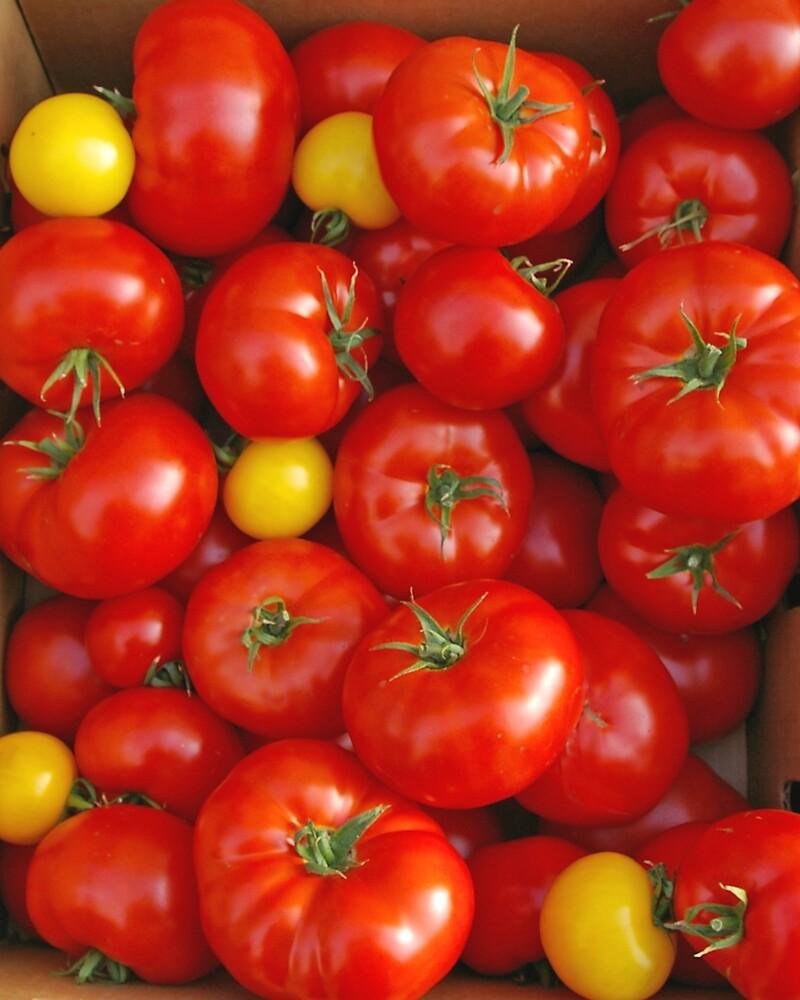 Tomatoes by Tom  Reynen