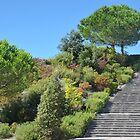 Stairway to ???? by Arie Koene