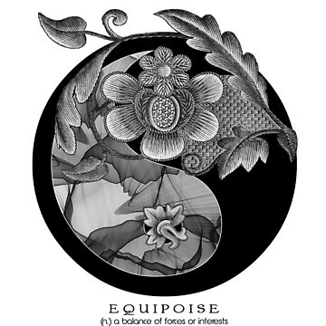 EQUIPOISE ii... 'a Beautiful Balance of Opposites' Yin Yang by FaithMayo