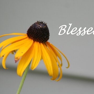 Blessed... by lyndamarie