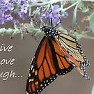Live, Love, Laugh... by lyndamarie