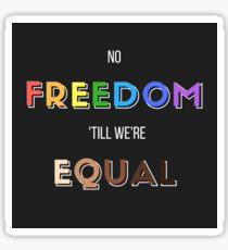 No freedom 'till we're equal Sticker