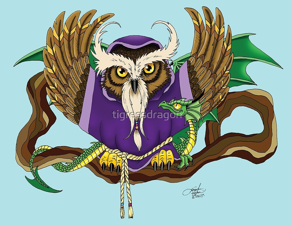 Wizard Owl & Dragon by tigressdragon