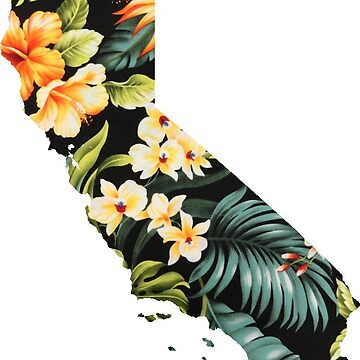California by coleenross