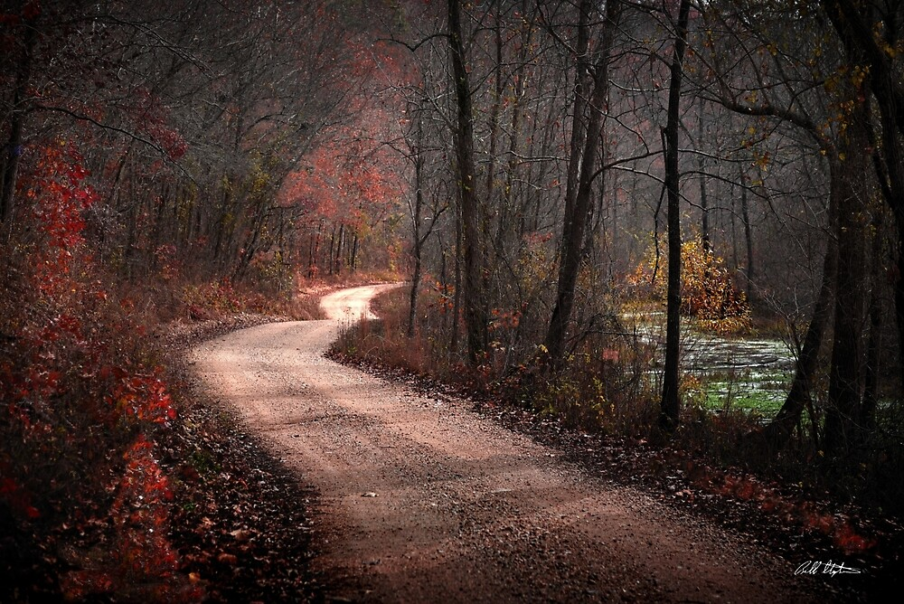 Boz Mill Road by Bill Stephens