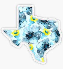 Texas Transparent Sticker