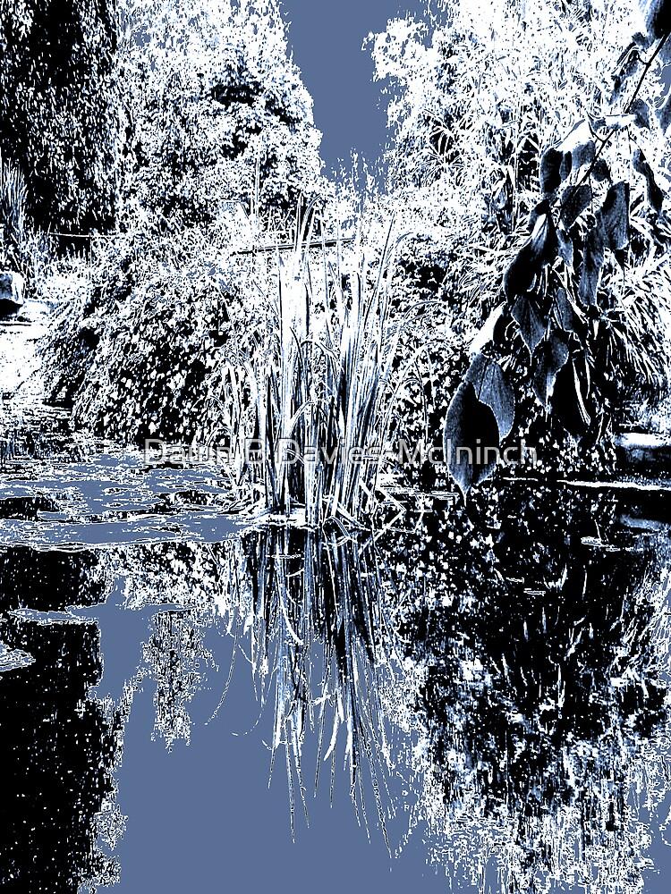 Ice Pool fantasy by Dawn B Davies-McIninch