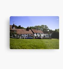 Village green Metal Print