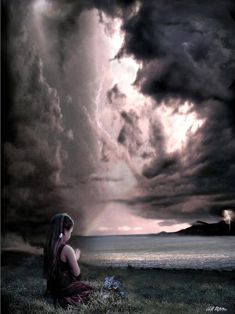 The Prayer by Bill Stephens