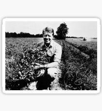 Jimmy Carter Peanut Farmer Sticker