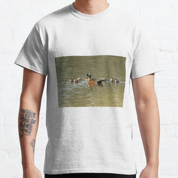 Chestnut Teal - family (569) Classic T-Shirt