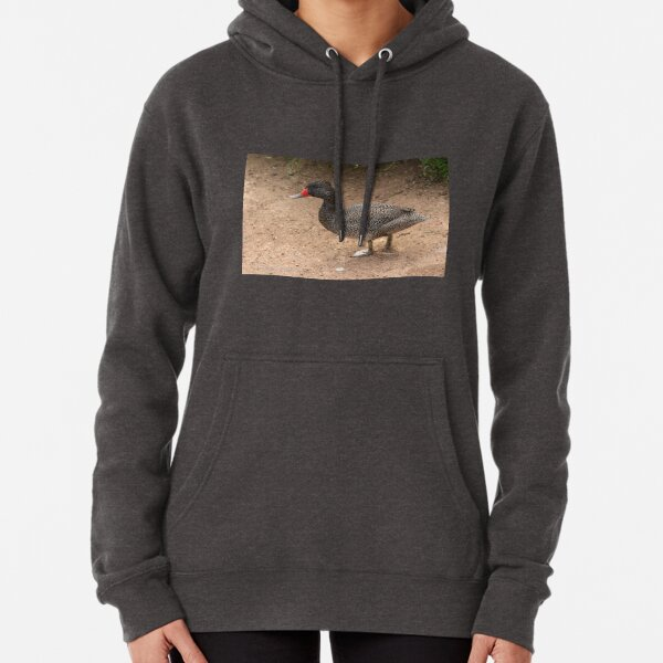 Freckled Duck (893) Pullover Hoodie